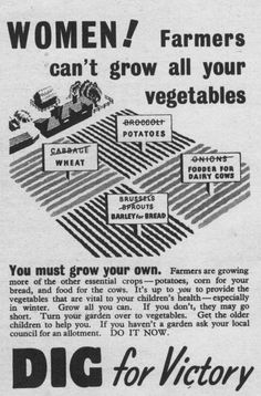 world war two propaganda poster. Dig for victory, victory garden ad, grow your own food Vintage Advertisements, Vintage Ads, Vintage Posters, Dig For Victory, Women's Land Army, Ww2 Propaganda Posters, Victory Garden, Interesting History, World War Two