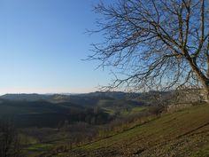 Today, 26 December 2014 in Vinchio