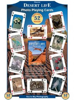 Discover Desert Life Playing Cards at theBIGzoo.com, a family-owned gift shop with 12,000+ animal-themed items.