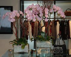 A beautiful orchid display we did for a local clothing store near us