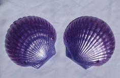 CUSTOM Mermaid Seashell Bra ANY COLOR by CelciasCreations on Etsy