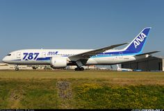 All Nippon Airways - ANA Boeing Dreamliner aircraft picture Ana Airlines, Boeing 787 8, Air Photo, Aircraft Pictures, Airplanes, Aviation, Planes, Air Ride, Plane