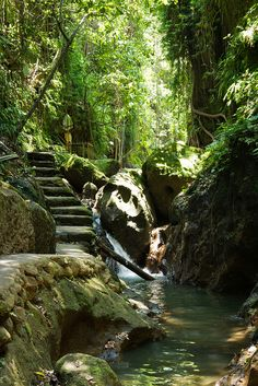 #PINdonesia Path to Sacred Monkey Forest Indonesia (by SebastienToulouse).