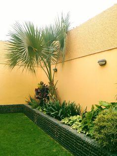 jardin en jardineras 2