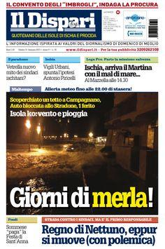 la copertina del 31 gennaio 2015 #ildispariquotidiano