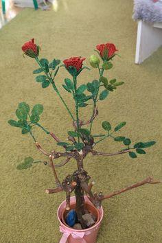 Gyöngyből készül a rózsafám is :)