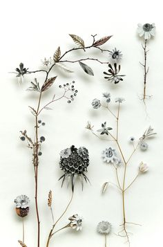 Flower construction #42 ~ Anne Ten Donkelaar