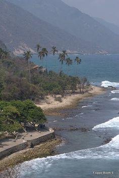 Chuao, pueblo costeño donde el mar es testigo de las mejores cosechas de cacao VENEZUELA