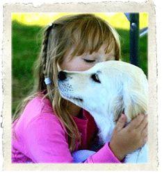 English Cream Golden Retriever. Why an autism service dog?