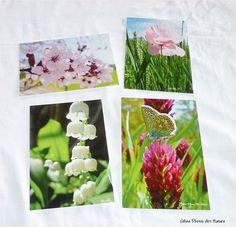 Lot de 4 cartes postales 10,5x15cm Fleurs et Muguet réalisées avec les photos de Céline Photos Art Nature. : Cartes par celinephotosartnature Celine, Photo Art, Nature, Photos, Etsy, Pink Blossom, Flowers, Lily Of The Valley, Artist