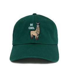 Hats are cool Llamas With Hats, Plain Caps, Dad Caps, Head Accessories, New Pins, Head To Toe, Caps Hats, Llama Hat, Dads
