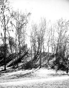 View of temple mound built by the Apalachee at Lake Jackson Mounds State Park Tallahassee, Florida, photo 1980s.