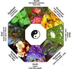 The Ultimate Magic Garden - Feng Shui in Every Corner of Your Garden