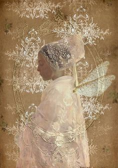 by Romany Soup, via Flickr...how delicate and lace-like, just beautiful:):)