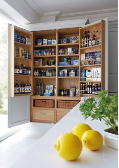 12 stylish and practical pantry ideas for your kitchen 12 Pantry Ideas – Larder Cupboard Ideas For Every Kitchen - Own Kitchen Pantry Kitchen Larder Cupboard, Kitchen Pantry Design, Kitchen Interior, Kitchen Storage, Pantry Storage, Pantry Organization, Kitchen Designs, Larder Cupboard Freestanding, Kitchen Cabinets And Cupboards