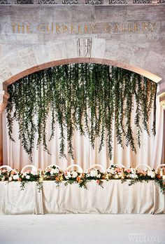 Greenery Curtain of Hanging Vines. Your head table will take center stage when it's set in front of a dramatic backdrop of hanging vines.