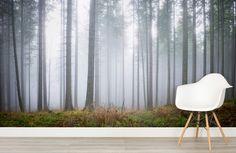 hinterland-haze-forest-mural-room