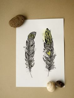 Hope Feathers. A4 size original illustration. pen and water colors, modern decor