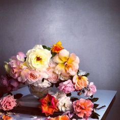 Roses at SHOWstudio. #rose #archive #showstudio. 14th July 2013