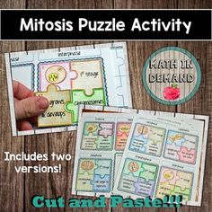 Mitosis and Meiosis Bundle - Math in Demand Mitosis Y Meiosis, Geometry Interactive Notebook, Interactive Notebooks, 7th Grade Science, Middle School Science, Elementary Science, Hands On Activities, Science Activities, Mitosis