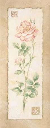 Cuadro Rose