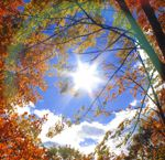 Sometimes in late Autumn. we get a period of unusually dry and warm weather also known as an Indian summer. Now, wouldn't that be nice? Indian Summer, Summer Party Themes, Mexico Resorts, Go Camping, Massachusetts, Amazing, Awesome, New England, Cool Photos