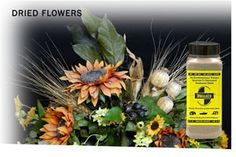 MoistureSorb™ moisture absorbing desiccant results in exhilarating dried flowers & foliage of all types. MoistureSorb™ Eco Flower Drying Desiccant Powder is reusable & lasts a year. Safe for people, pets & planet. This eco-friendly natural flower drying desiccant really works!