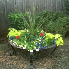 Old fire pit i turned into a planter flowers pinterest for Flower fire pit