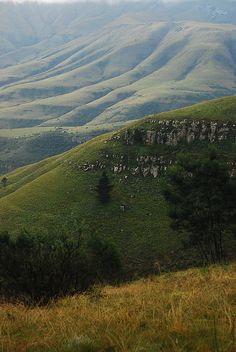 near hogsback mountain