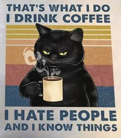 Funny Pix, Funny Pictures, Coffee Jokes, Cat Posters, Bad Cats, Here Kitty Kitty, Cute Funny Animals, Grumpy Cat, Beautiful Cats