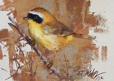 """Yellowthroat by Mike Beeman Pastel ~ 5"""" x 7"""""""