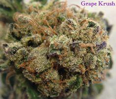 Grape Krush   mmjkarma.com