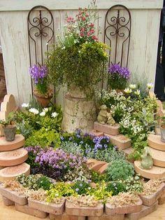 Mini Plants, Indoor Plants, Rose Garden Design, Plant Aesthetic, Flowers Nature, Small Gardens, Dream Garden, Flower Beds, Container Gardening