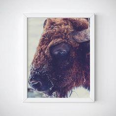 Buffalo Wall Art https://www.etsy.com/listing/510478840/buffalo-wall-art-buffalo-print-bison