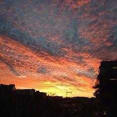 beautiful sky over DC tonight. love my city.
