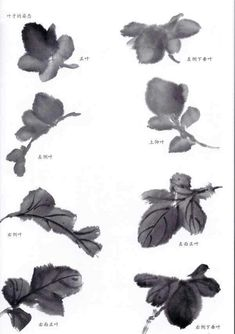 Sumi E Painting, Japan Painting, Chinese Painting, Japanese Drawings, Japanese Art, Tinta China, China Art, Traditional Paintings, Watercolor Paintings