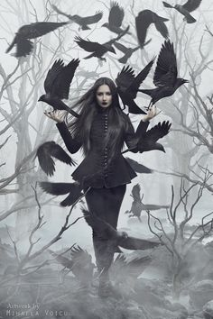"""gdfalksen: """"Blackbirds by Mihaela-V """""""