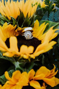 Last summer I flew out to California to photograph this colorful Sonoma wine country wedding for Ali and Nick. Pictures With Sunflowers, Sunflower Pictures, Engagement Ring Photography, Wedding Photography Poses, Wedding Ring Pictures, Engagement Pictures, Wedding Rings, Coral Fall Wedding, Prenup Photos Ideas