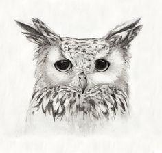 """White Eagle Owl Print 8""""x10"""". $15.00, via Etsy."""