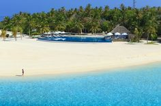 Maldives island holiday package, all inclusive luxury honeymoon deals, luxury resort vacation, beach and paradise resort holidays, cheapest holiday offers. Costa, Maldives Resort, Maldives Travel, Paradise On Earth, Island Resort, Romantic Getaway, Illustrations, Beach Resorts, Luxury Resorts