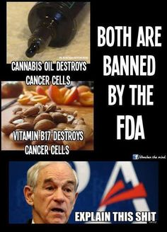 Don't allow the government to bully you. The Medical Industry makes billions off of the treatment of Cancer and don't want it too be cured Vitamine B17, Endocannabinoid System, Cancer Cure, Cancer Cells, Cancer Foods, Out Of Touch, Cannabis Oil, Conspiracy Theories, Sick