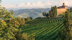 http://www.goaheadtours.com/tir/food-wine-northern-italy-the-italian-riviera?utm_source=indies