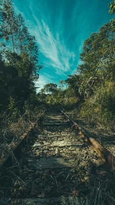 HD Wallpapers: Nature - Railway, trees, grass : id 46394 Full Hd Wallpaper Android, 4k Phone Wallpapers, Backgrounds For Android, 4k Wallpaper Iphone, Hd Nature Wallpapers, 4k Wallpaper For Mobile, Flower Phone Wallpaper, Sunset Wallpaper, Mobile Wallpaper