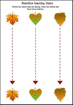 tracing pictures for kids | Fall Leaf Tracing Lines Worksheet For Kids