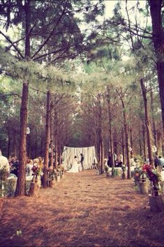 Outside country wedding in the pines