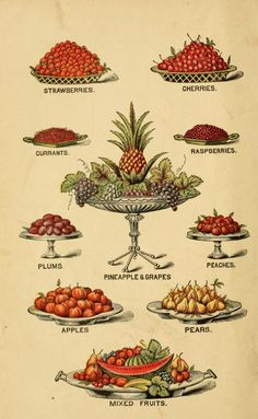 Illustration from Breakfast, Dinner and Supper - In Five Parts. 1887.