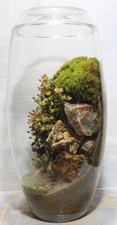 Planting a terrarium vertically to create the feel of a beach-side cliff