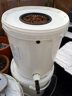 I had a spare food grade bucket and lid, left over, so made a single Deep Water Culture bucket Hydroponics System, Hydroponic Gardening, Food Grade Buckets, Hydro Systems, Water Management, Farm Gardens, Whitening, Deep Water, Stuffed Peppers