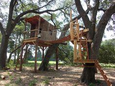 @:  Custom Treehouse