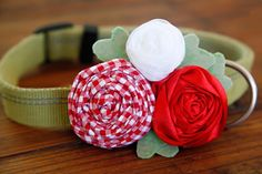 Dalmatian DIY: DIY Rolled Fabric and Ribbon Rosette Dog Collar